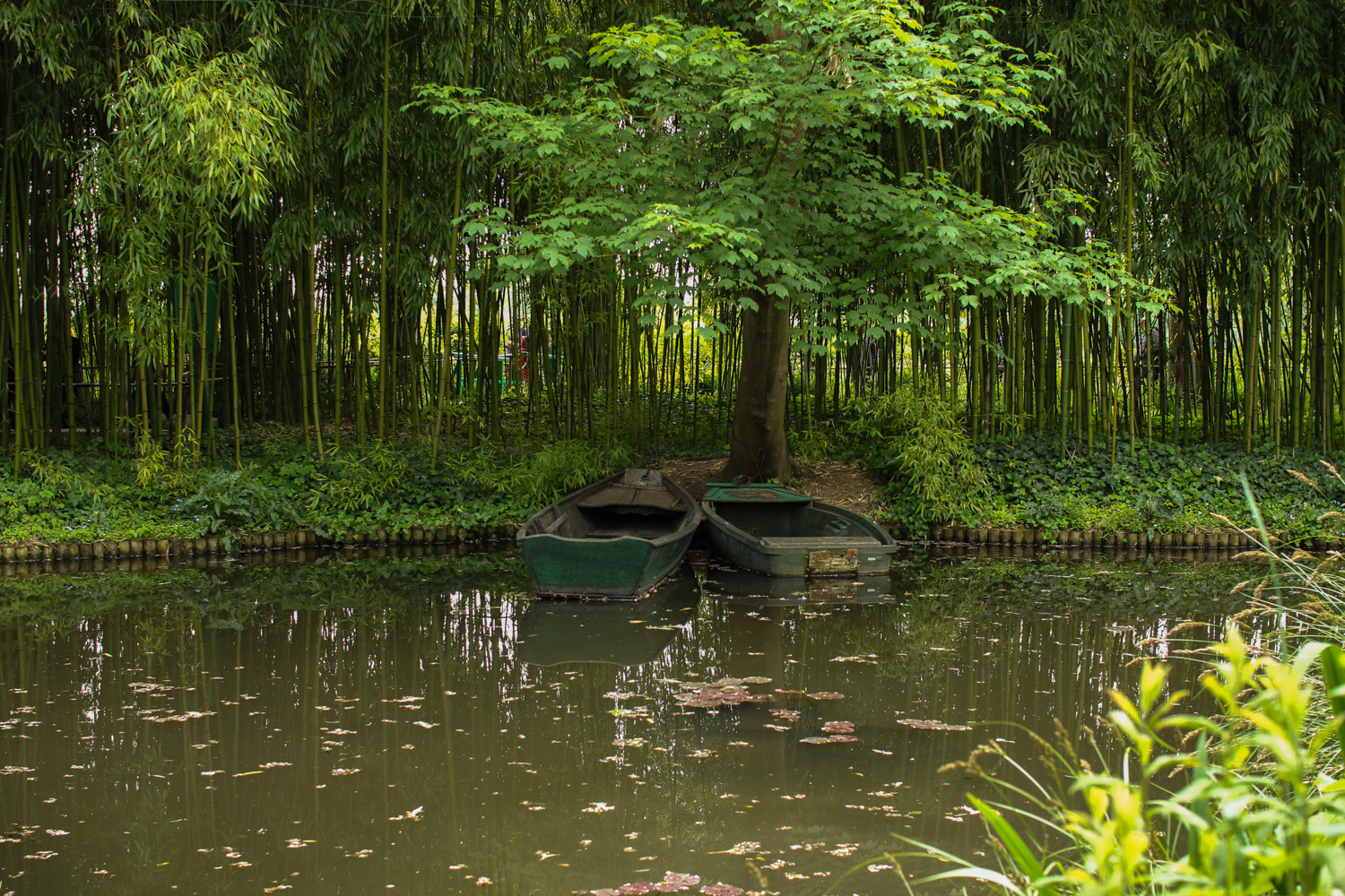 Boats in Monet's Garden, Giverny
